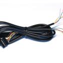 Storm Breakout Cable